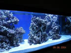 marine tank aquascaping reef aquascaping designs search aquarium