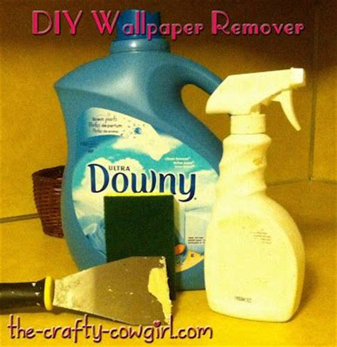 pinterest easy wallpaper removal 1000 images about emily s room on pinterest wallpaper