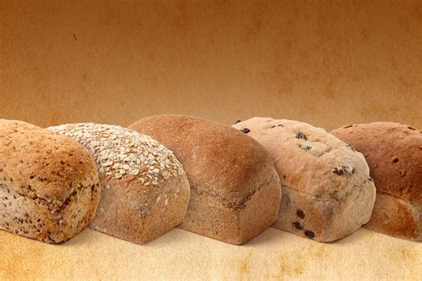 whole grains vs refined grains great harvest bread bakery utah