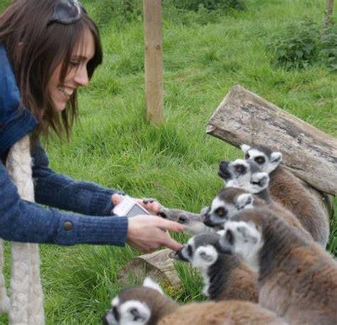 animal encounters  reaseheath reaseheath college