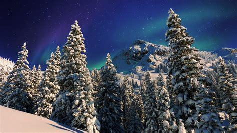 fotos gratis naturaleza monta 241 a nieve invierno pa 237 s