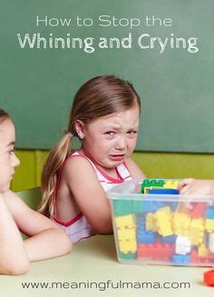 how to stop a from whining 25 best ideas about stop whining on stop complaining get it and
