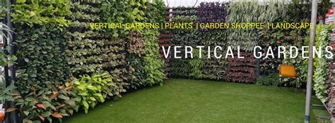 vertical garden plants indoor and outdoor vertical