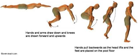 How To Float In Water While Standing by Stand Up Mid Swim From Prone And Supine Positions