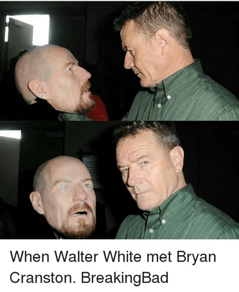 Bryan Cranston Memes - 25 best memes about walter white walter white memes