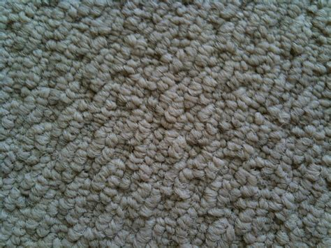 Rugs Central Coast by Central Coast Carpet Cleaning In Burnie Tas Cleaning