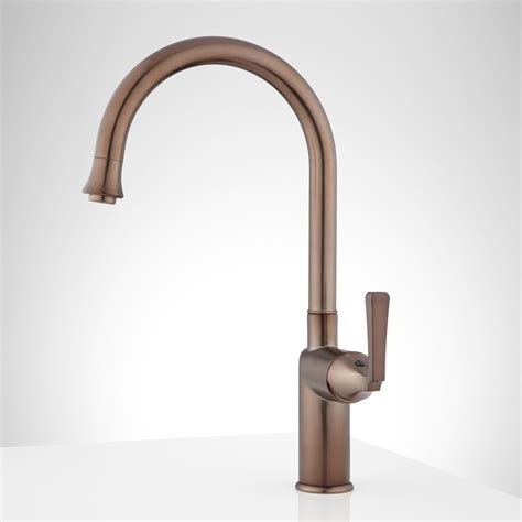 tall kitchen faucet pieta tall single hole kitchen faucet with swivel spout