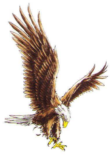 17 beste idee 235 n over adler tattoo op pinterest eagle