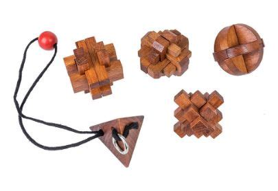 Puzzle 3d Great Minds Set Of 5 5 great puzzles