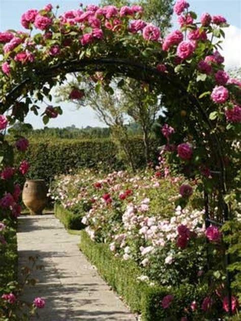 rose garden themes decorating garden rooms design bookmark 7478