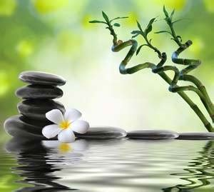 imagenes de fotos zen reiki level 1 training in atlanta and ny with reiki master