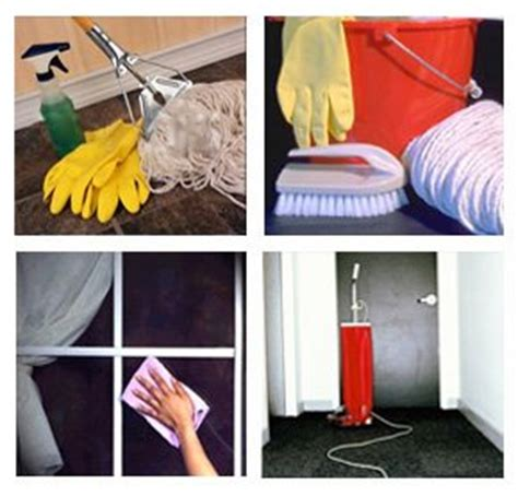 house cleaning seattle green carpet cleaning services seattle wa ibc digital marketing affinity