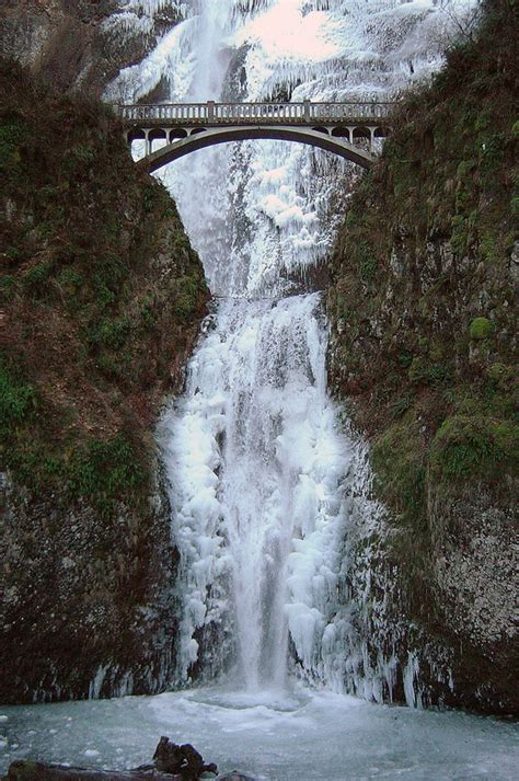Upside Down Christmas Tree by Stunning Multnomah Falls Ritemail