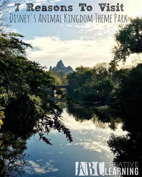7 Reasons To Animal Planet by 7 Reasons To Visit Disney S Animal Kingdom Theme Park