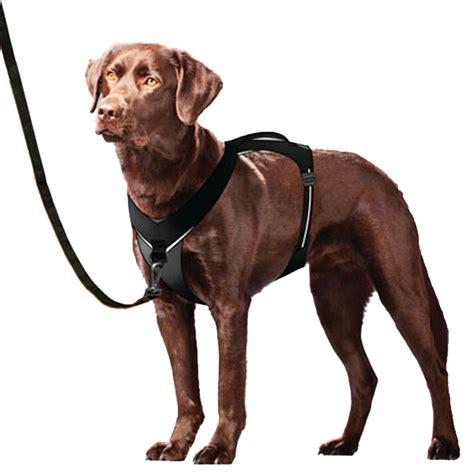 kurgo harness kurgo go tech adventure harness black at baxterboo