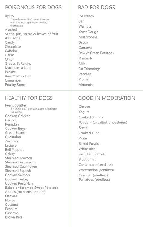 human food safe for dogs human food for dogs the ultimate list bark potty