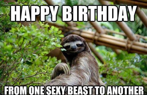 Animal Meme Generator - 25 best ideas about happy birthday meme generator on
