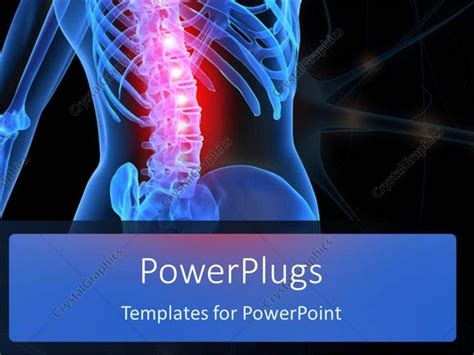 powerpoint template human anatomy showing inflamed spinal