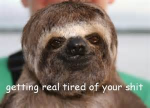 Getting Real Tired Meme - sloth getting real tired of your shit funny things
