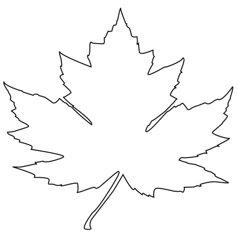 28 best white maple leaf maple leaf leaves icon