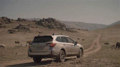 Subaru Outback Commercial by In Subaru Commercial Newhairstylesformen2014