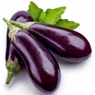 resep sayur lodeh terong ungu  enak