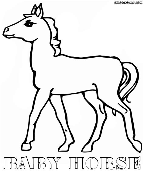coloring pictures of baby horses 87 coloring pictures of baby horses a cute horse