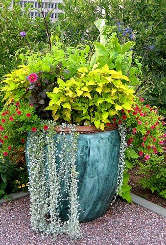 Container Planter Design Ideas by Containers In The Shade Lamond Landscaping