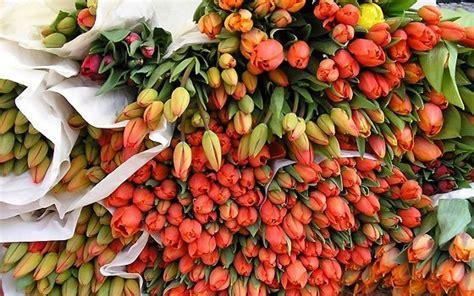 mercato dei fiori barcellona mercato dei fiori di leeuwarden eventi in olanda