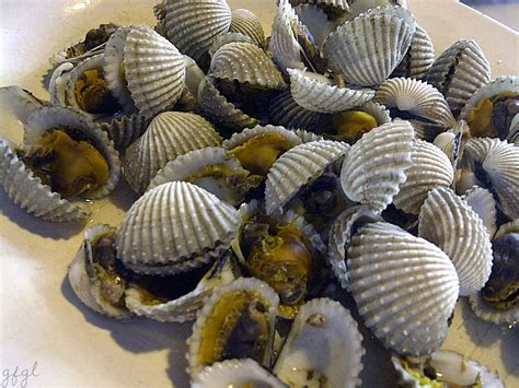 kerang darah rebus boiled cockles food and