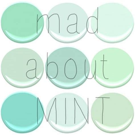 benjamin mint green mint fresh mint leisure green copper patina light