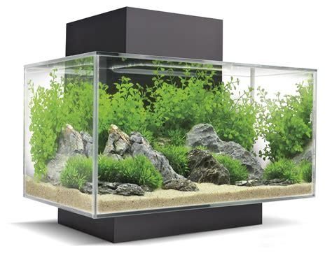 aquarium design edge roj fashion lifestyle the living l biorb flow
