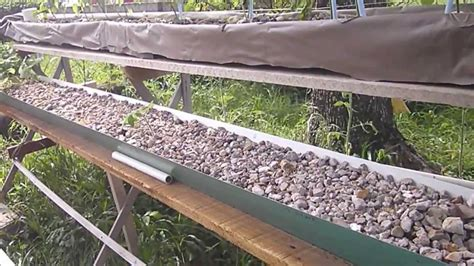 aquaponic grow beds aquaponics belize grow beds trough youtube