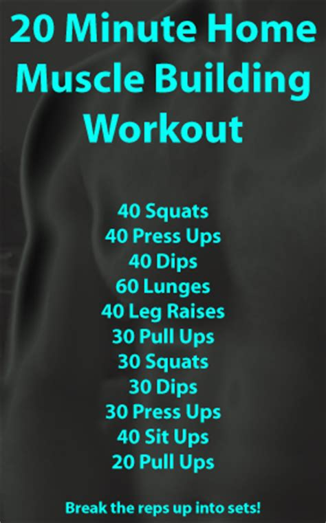 part workouts beginner workout routines