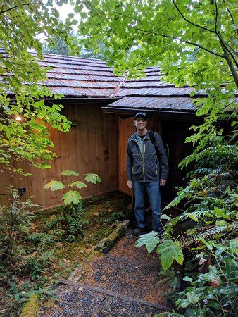 Forest Cabins Ashford Wa by Forest Cabins At Mt Rainier Updated 2017 Prices