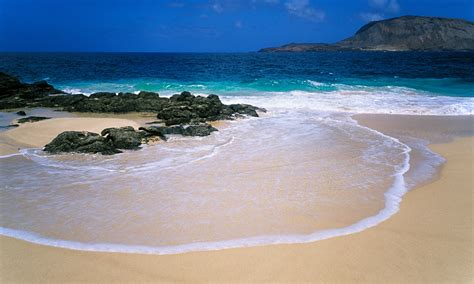 canary island canary islands to vote on exploration world news the guardian
