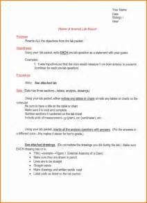 3 lab report format pdf ledger paper