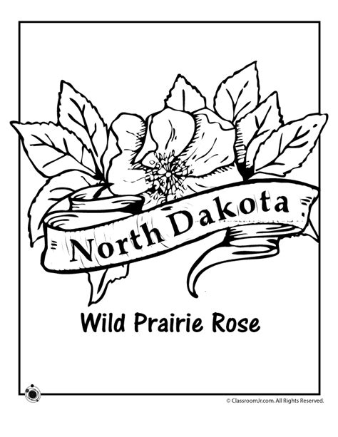 north dakota state flower coloring page woo jr kids