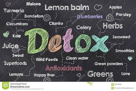 Words Associated With Detox by Detox Illustrations Vector Stock Images 3431