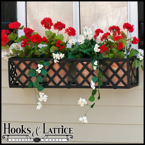 window box cage lattice window box cages last and look well