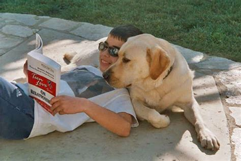 reading to dogs your morning adorable reading dogs help some learn l a unleashed los