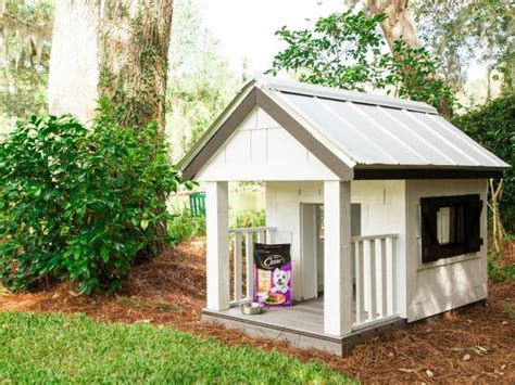 friendly house dogs pets pet friendly ideas for home and garden hgtv