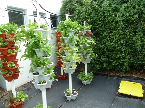 relevant information  hydroponic gardening