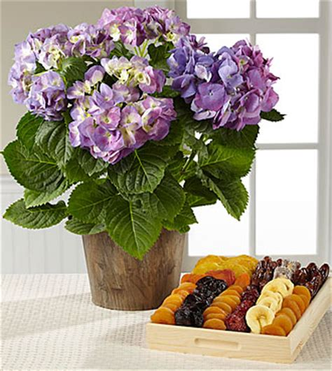 Comfort Planter by The Ftd 174 Comfort Planter