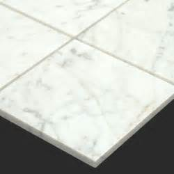 Carrara Marble Floor Tile Bianco Carrara White Marble 6x6 Tile Modern Wall And Floor Tile Other Metro By