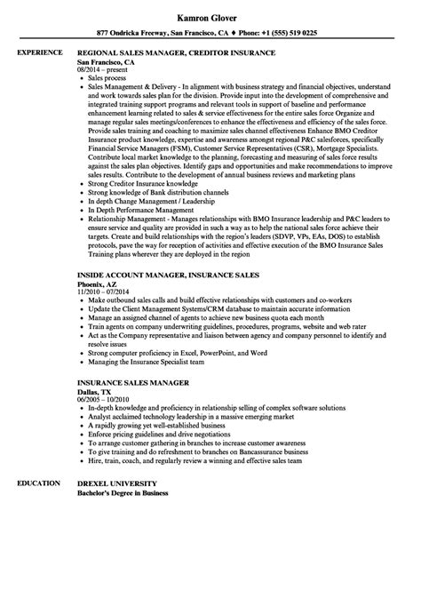 classy resume objective for account manager position for your resume