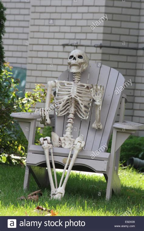 Decorative Sitting Chairs by Skeleton Sitting Chair Stock Photos Skeleton Sitting