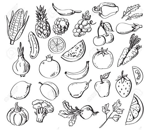Drawing Vegetables by Vegetables And Fruits Drawing Www Pixshark Images