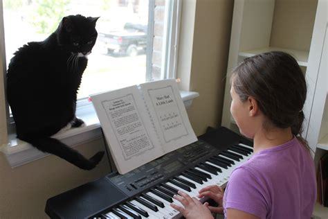Piano Giveaway - piano is easy giveaway confessions of a homeschooler