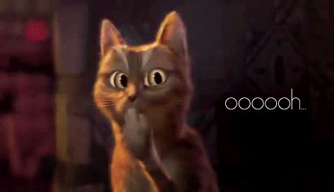 The Ooooohc by Puss In Boots Drama Gif Find On Giphy